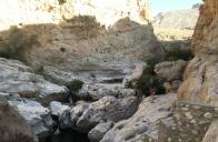Le canyon de Wadi Bani Khalid